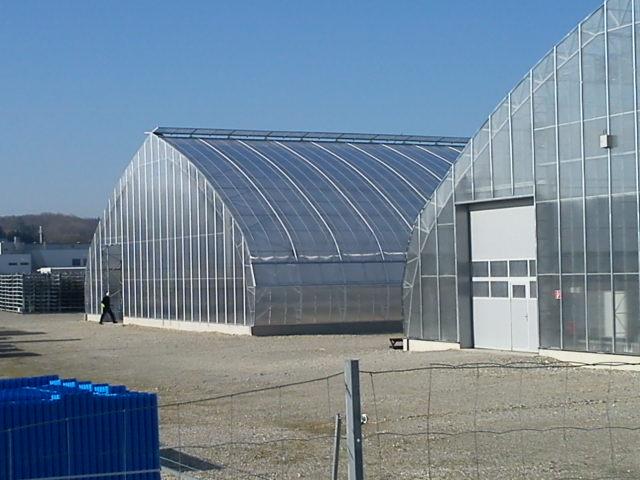 Reo Tuote Termorex Greenhouses