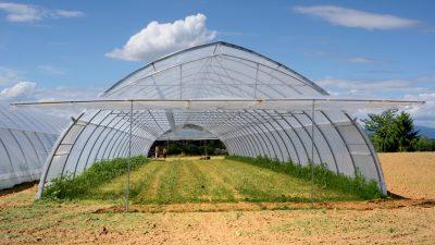 Ogiva foil tunnels for season 2018