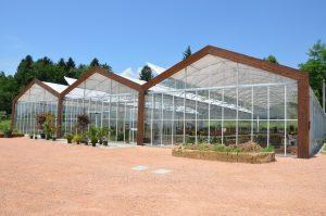 garden-cittg-giardino-2