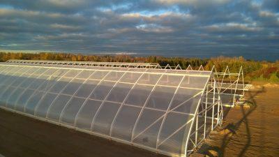 Kasvuhoonete ehitus ja müük