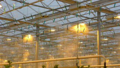 Kõrgsurve udutussüsteem kasvuhoonetesse